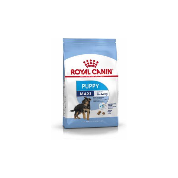 ROYAL CANIN SHN Maxi Puppy 15 kg